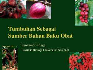 kuliah etno-erna-1-Tumbuhan Sebagai Bahan Baku Obat-utk blog-cover